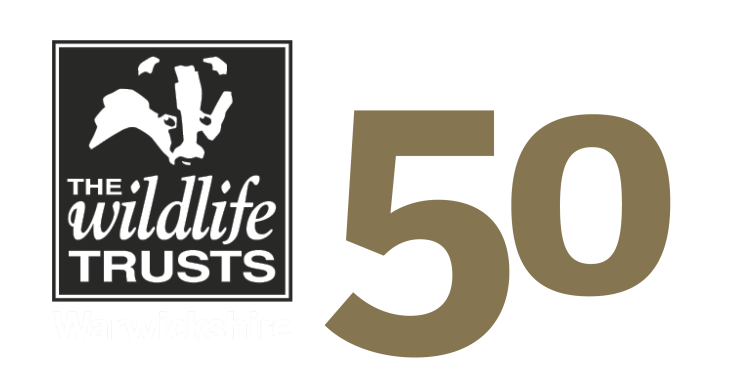 50 Years logo trans and white